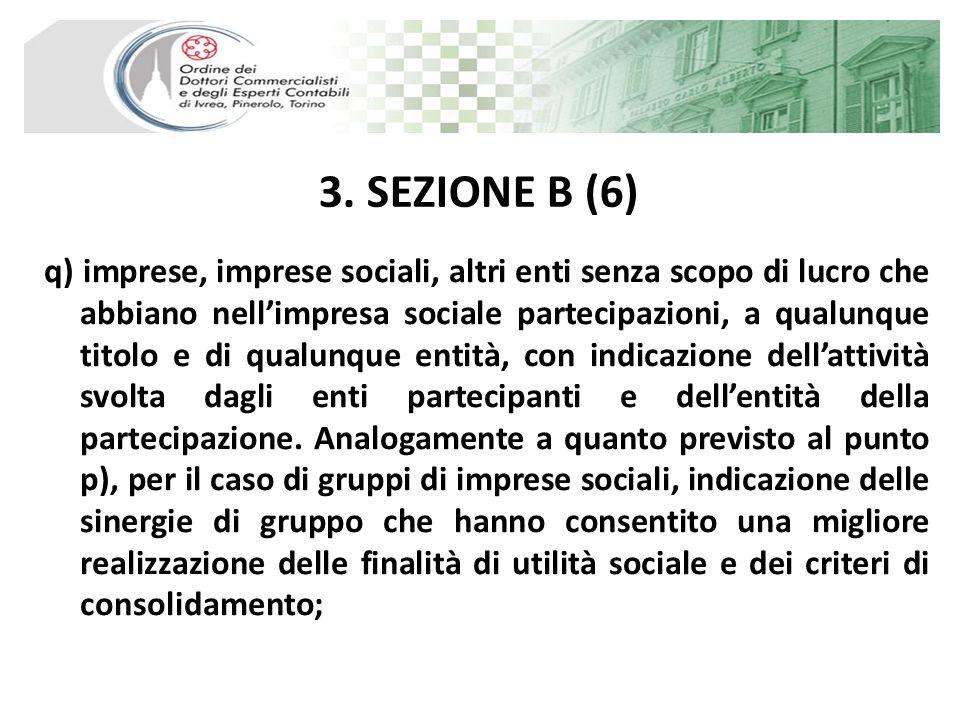 3. SEZIONE B (6) q) imprese, imprese sociali, altri enti senza scopo di lucro che abbiano nellimpresa sociale partecipazioni, a qualunque titolo e di