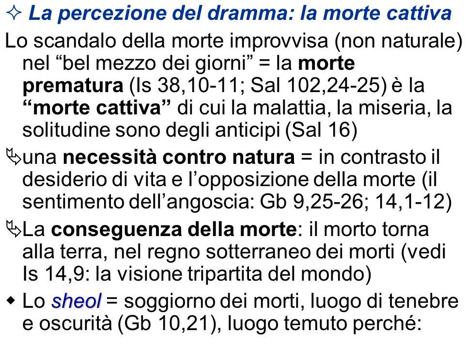 La percezione del dramma: la morte cattiva Lo scandalo della morte improvvisa (non naturale) nel bel mezzo dei giorni = la morte prematura (Is 38,10-1