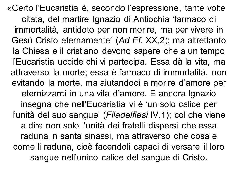 «Certo lEucaristia è, secondo lespressione, tante volte citata, del martire Ignazio di Antiochia farmaco di immortalità, antidoto per non morire, ma p