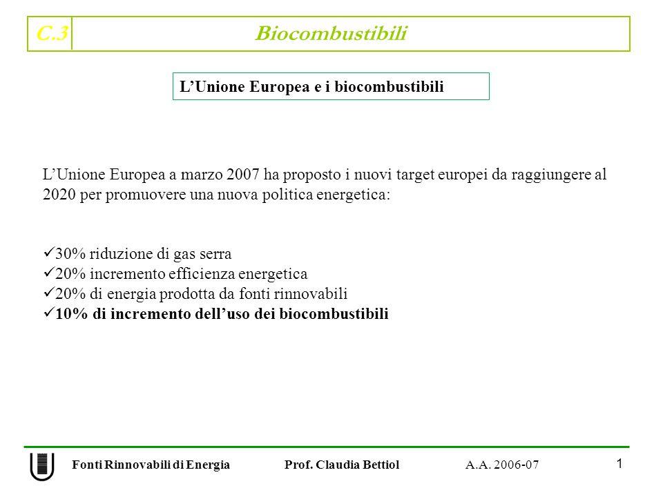 C.3 Biocombustibili 12 Fonti Rinnovabili di Energia Prof.
