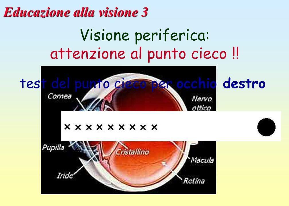 Educazione alla visione 3 Visione periferica: attenzione al punto cieco !! test del punto cieco per occhio destro