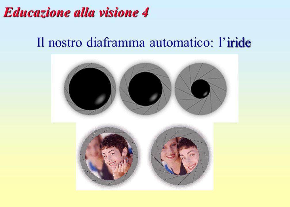 Educazione alla visione 5 tempi di adattamento alla visione notturna: dai 10 ai 30 minuti (dipende dalletà .