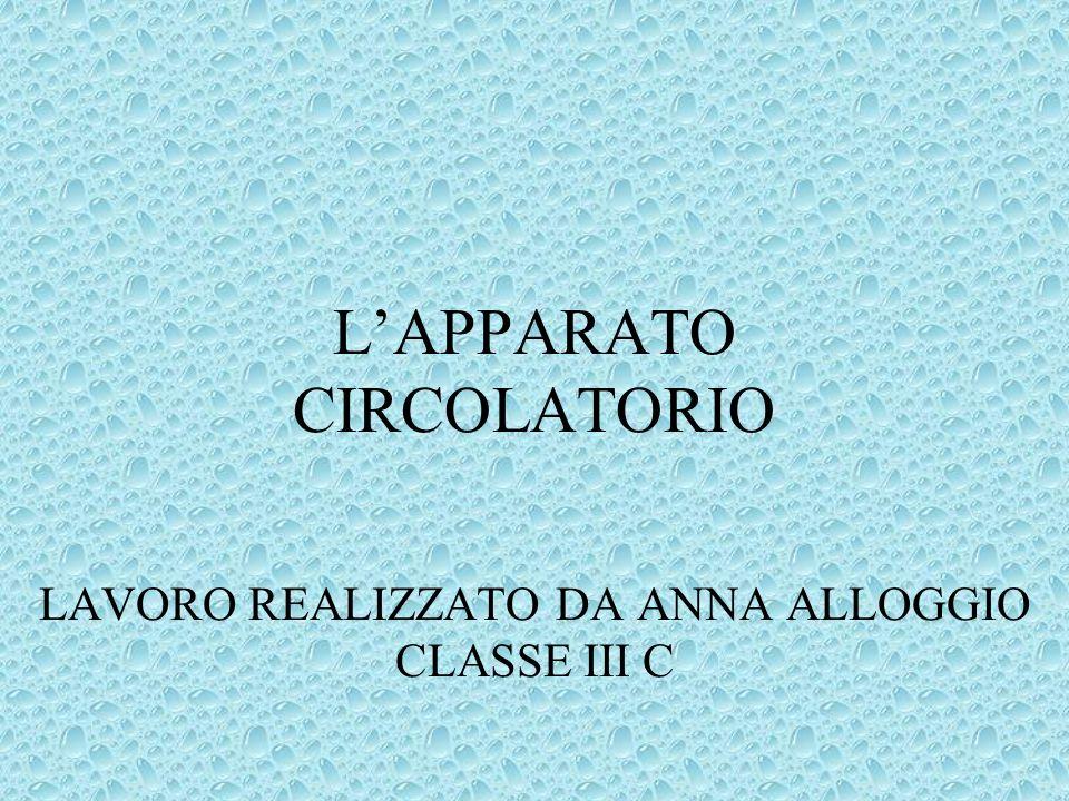 LAPPARATO CIRCOLATORIO LAVORO REALIZZATO DA ANNA ALLOGGIO CLASSE III C