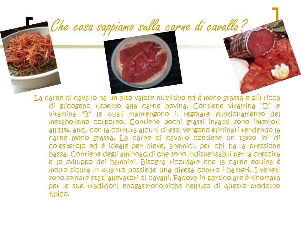Che cosa sappiamo sulla carne di cavallo? La carne di cavallo ha un alto valore nutritivo ed è meno grassa e più ricca di glicogeno rispetto alla carn