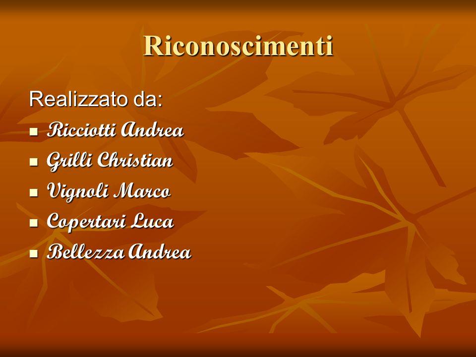 Riconoscimenti Realizzato da: Ricciotti Andrea Ricciotti Andrea Grilli Christian Grilli Christian Vignoli Marco Vignoli Marco Copertari Luca Copertari
