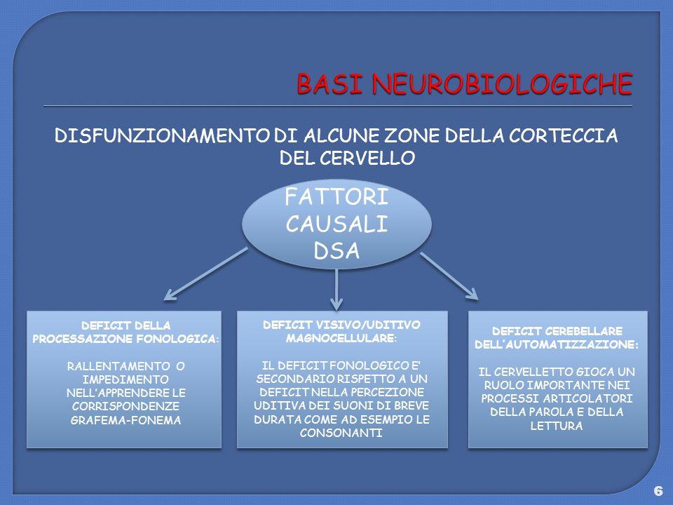 6 DISFUNZIONAMENTO DI ALCUNE ZONE DELLA CORTECCIA DEL CERVELLO FATTORI CAUSALI DSA DEFICIT DELLA PROCESSAZIONE FONOLOGICA: RALLENTAMENTO O IMPEDIMENTO