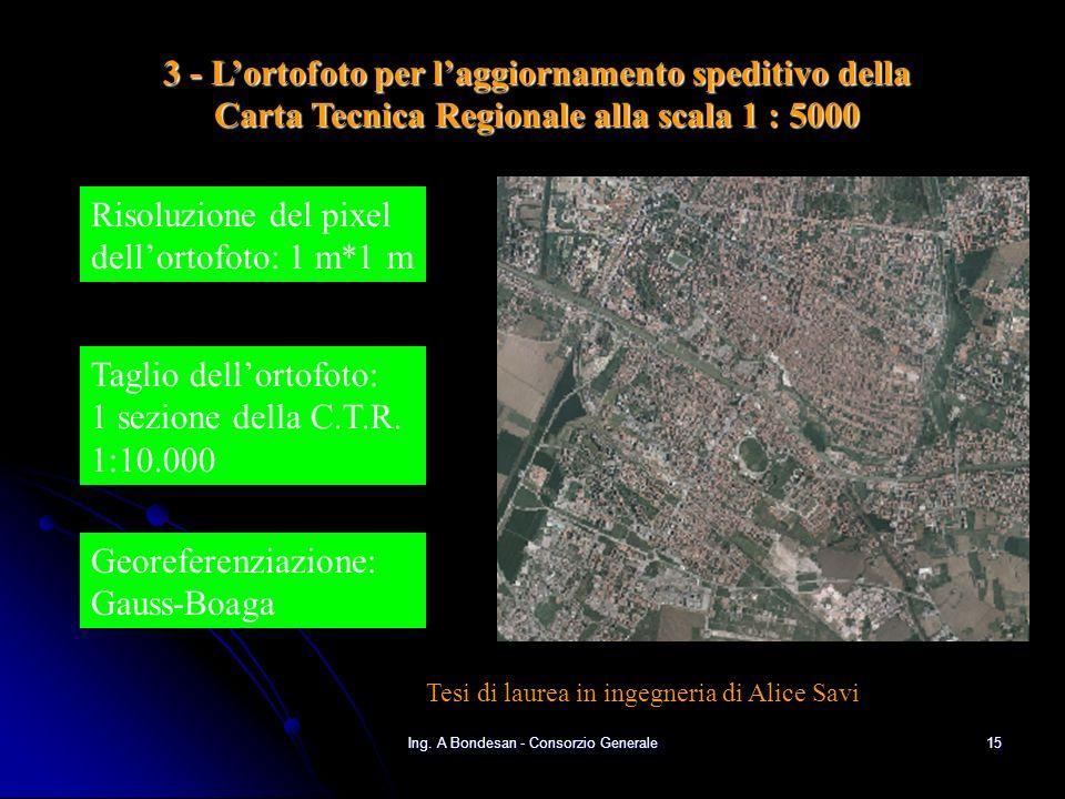 Ing. A Bondesan - Consorzio Generale14 Risultati della sovrapposizione della CTR e della cartografia Catastale
