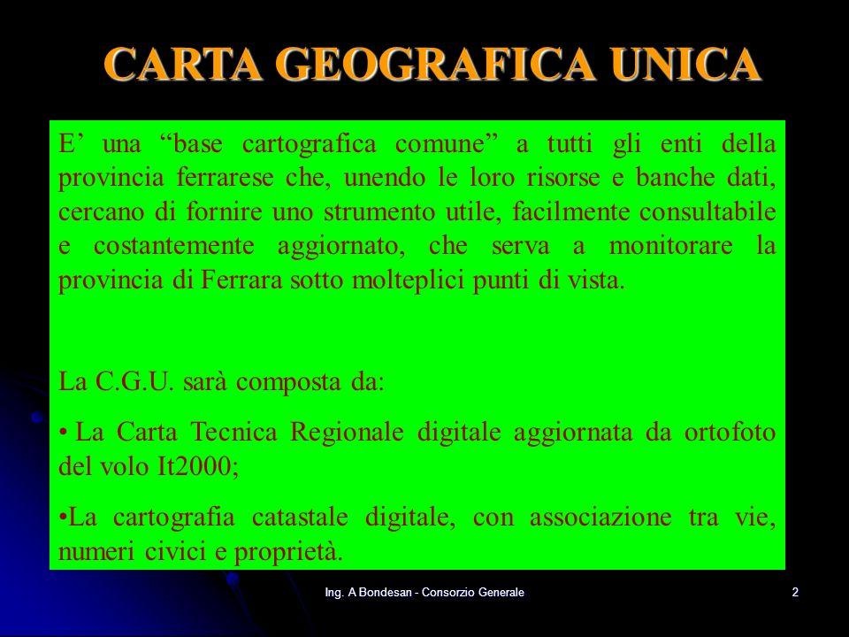 Ing. A Bondesan - Consorzio Generale32 Sito internet per la Carta Geografica Unica