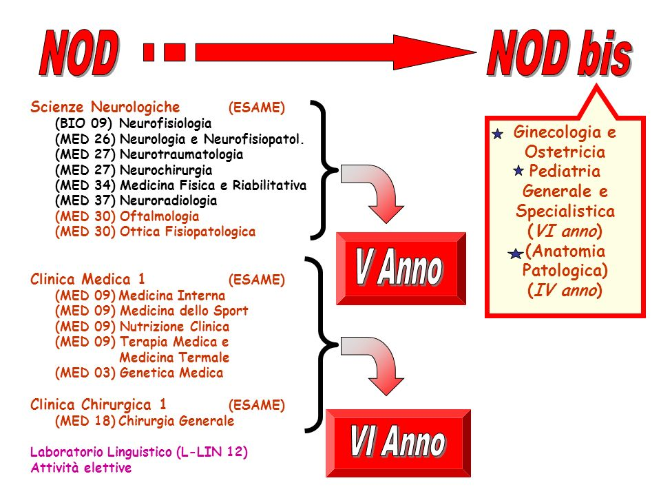 Scienze Neurologiche (ESAME) (BIO 09) Neurofisiologia (MED 26) Neurologia e Neurofisiopatol. (MED 27) Neurotraumatologia (MED 27) Neurochirurgia (MED