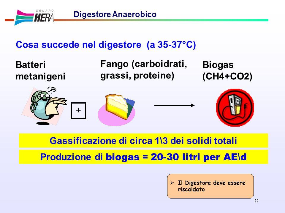11 Digestore Anaerobico Cosa succede nel digestore (a 35-37°C) + Batteri metanigeni Fango (carboidrati, grassi, proteine) Biogas (CH4+CO2) Produzione