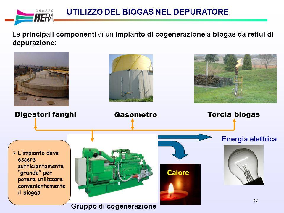 12 UTILIZZO DEL BIOGAS NEL DEPURATORE Le principali componenti di un impianto di cogenerazione a biogas da reflui di depurazione: Digestori fanghi Gas