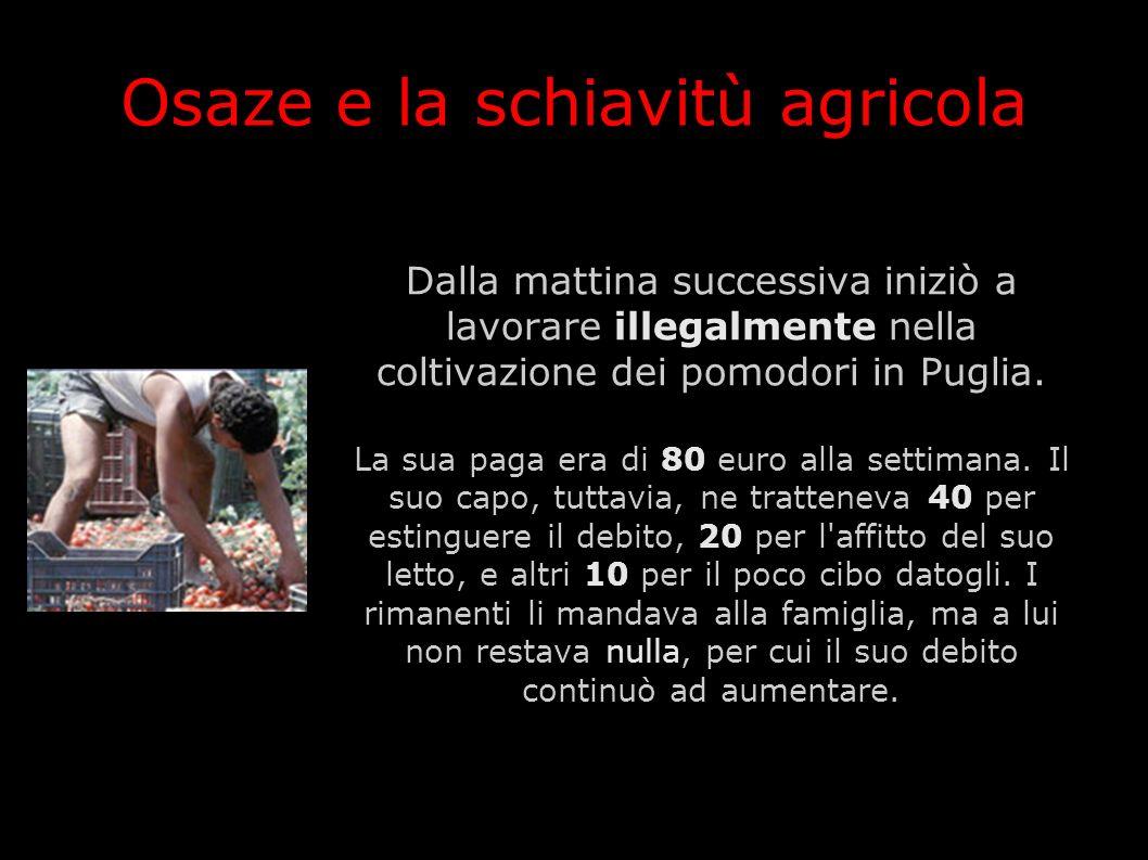 Osaze e la schiavitù agricola Dalla mattina successiva iniziò a lavorare illegalmente nella coltivazione dei pomodori in Puglia. La sua paga era di 80