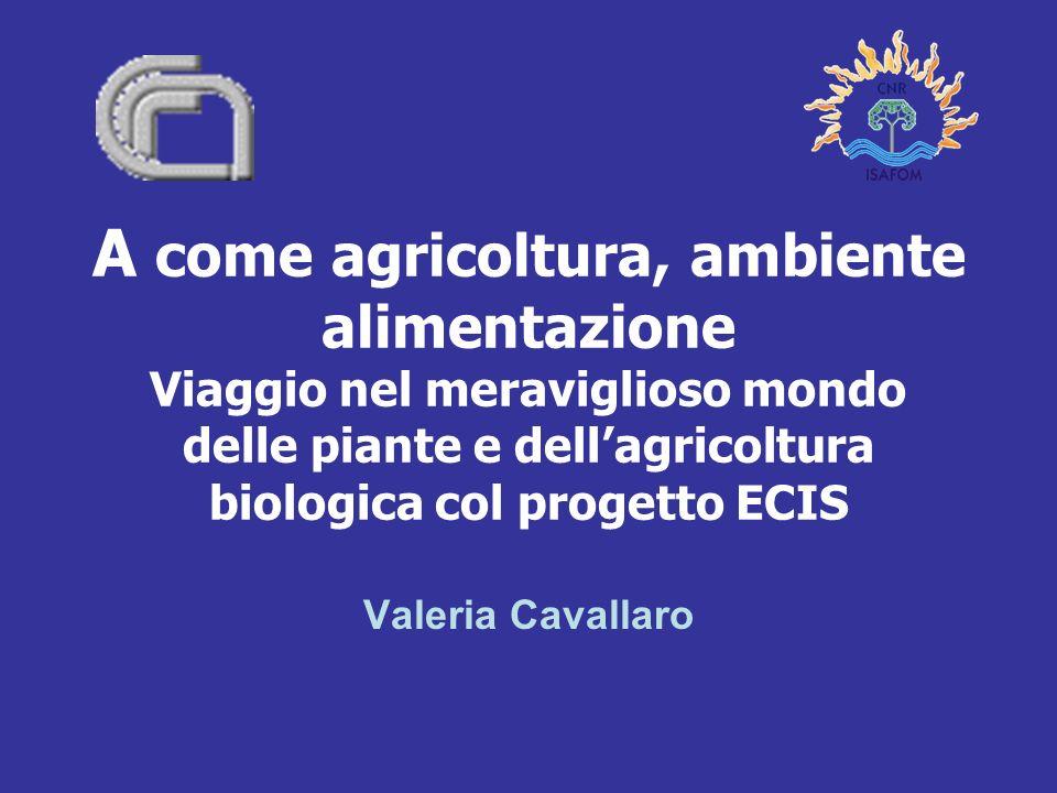A come agricoltura, ambiente alimentazione Viaggio nel meraviglioso mondo delle piante e dellagricoltura biologica col progetto ECIS Valeria Cavallaro
