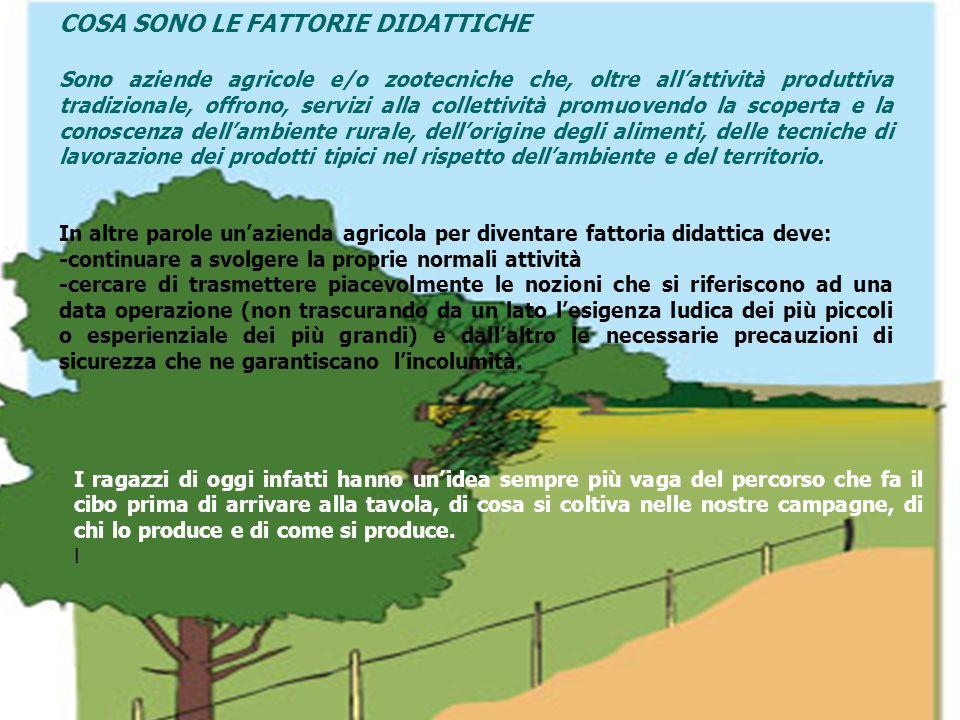 COSA SONO LE FATTORIE DIDATTICHE Sono aziende agricole e/o zootecniche che, oltre allattività produttiva tradizionale, offrono, servizi alla collettiv
