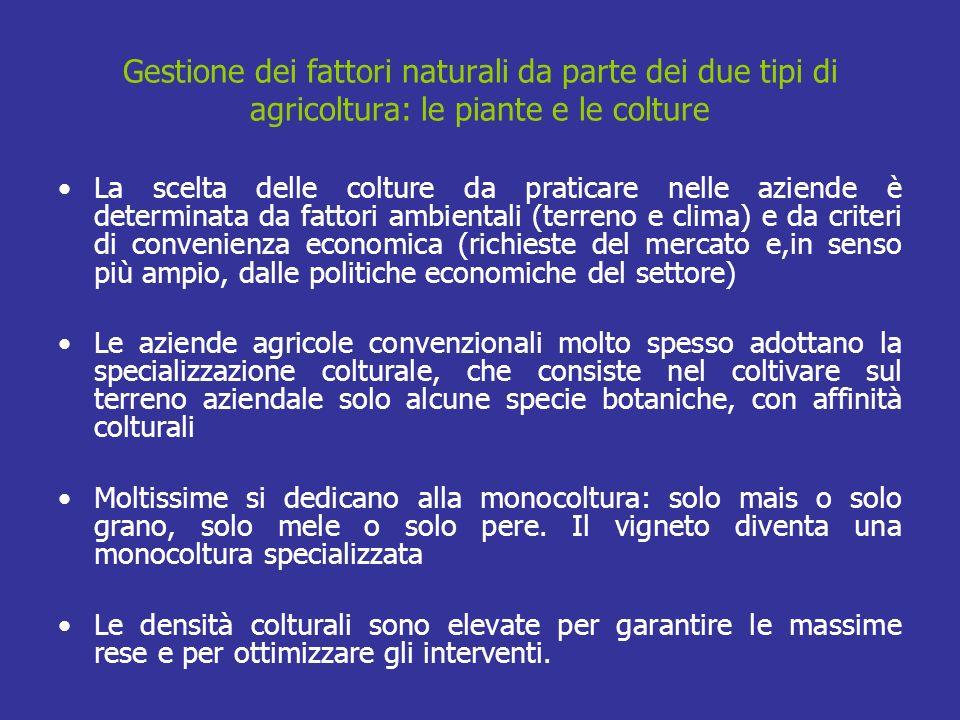 Gestione dei fattori naturali da parte dei due tipi di agricoltura: le piante e le colture La scelta delle colture da praticare nelle aziende è determ