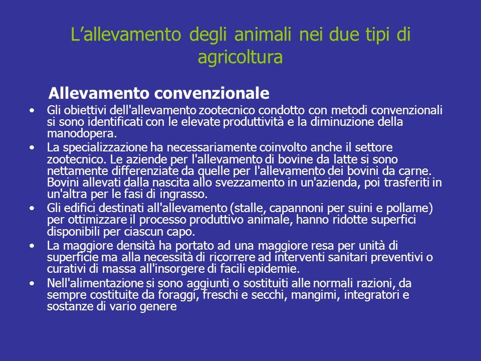 Lallevamento degli animali nei due tipi di agricoltura Allevamento convenzionale Gli obiettivi dell'allevamento zootecnico condotto con metodi convenz
