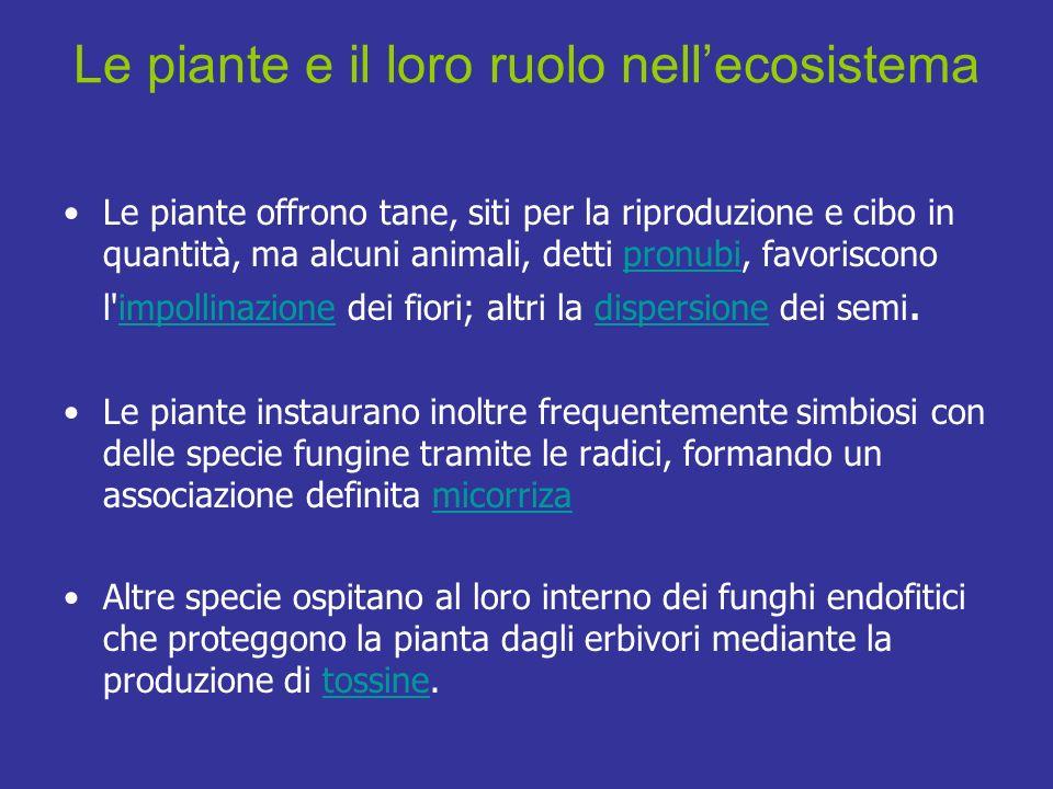 Le piante e il loro ruolo nellecosistema Le piante offrono tane, siti per la riproduzione e cibo in quantità, ma alcuni animali, detti pronubi, favori