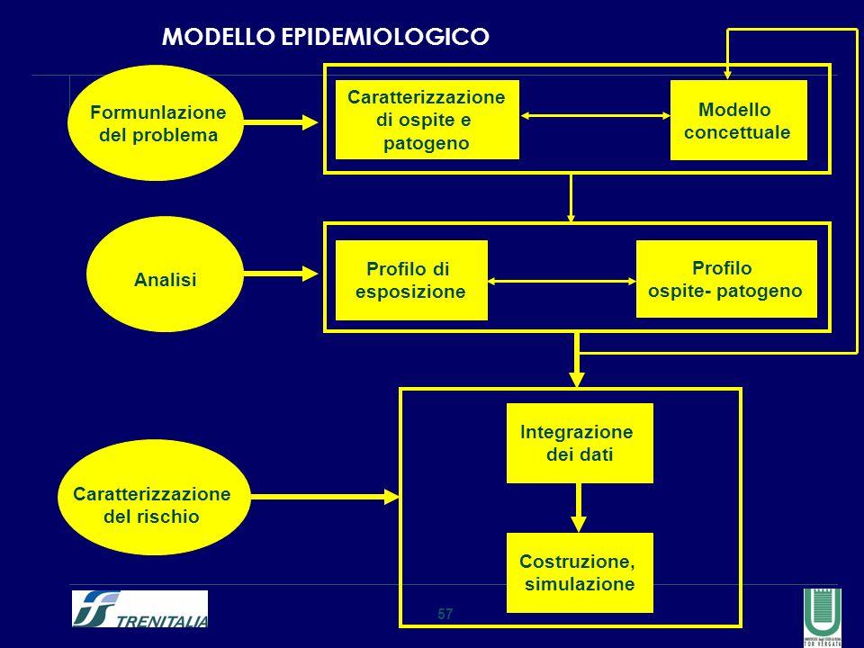 57 MODELLO EPIDEMIOLOGICO Formunlazione del problema Analisi Caratterizzazione del rischio Caratterizzazione di ospite e patogeno Modello concettuale