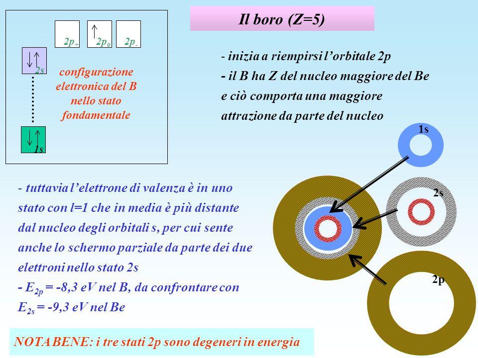 Il boro (Z=5) - inizia a riempirsi lorbitale 2p - il B ha Z del nucleo maggiore del Be e ciò comporta una maggiore attrazione da parte del nucleo - tu