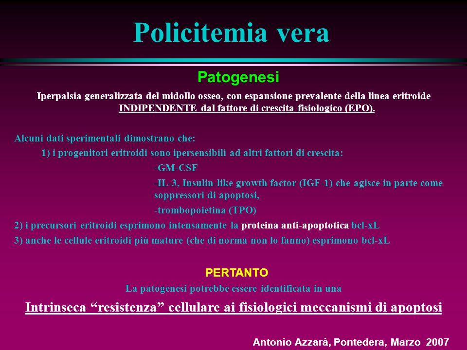 Policitemia vera Patogenesi Iperpalsia generalizzata del midollo osseo, con espansione prevalente della linea eritroide INDIPENDENTE dal fattore di crescita fisiologico (EPO).