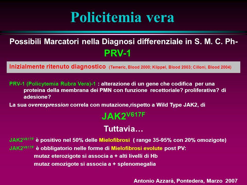 Policitemia vera Terapia - 7 Busulfano, 32 P EORTC (Br J Cancer,1981) 293 paz follow-up medio 8 aa 32 P Busulfano Signif.