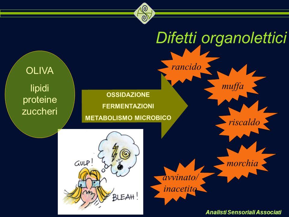 Analisti Sensoriali Associati Difetti organolettici rancido morchia avvinato/ inacetito riscaldo muffa OLIVA lipidi proteine zuccheri OSSIDAZIONE FERM