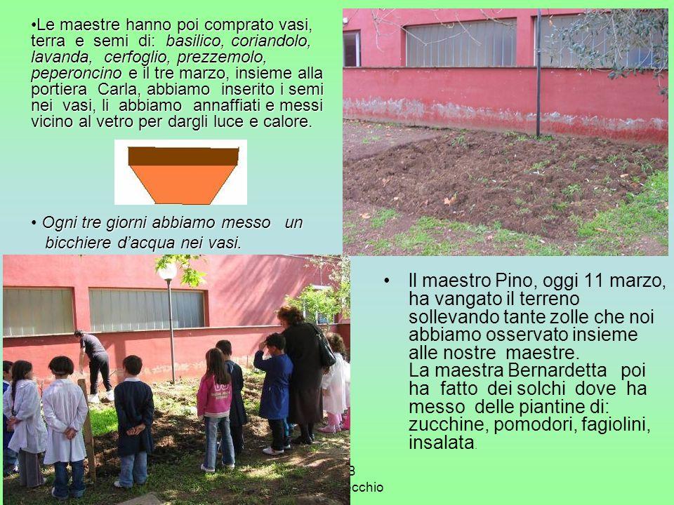 2° A-B Ida Del Vecchio ll maestro Pino, oggi 11 marzo, ha vangato il terreno sollevando tante zolle che noi abbiamo osservato insieme alle nostre maes