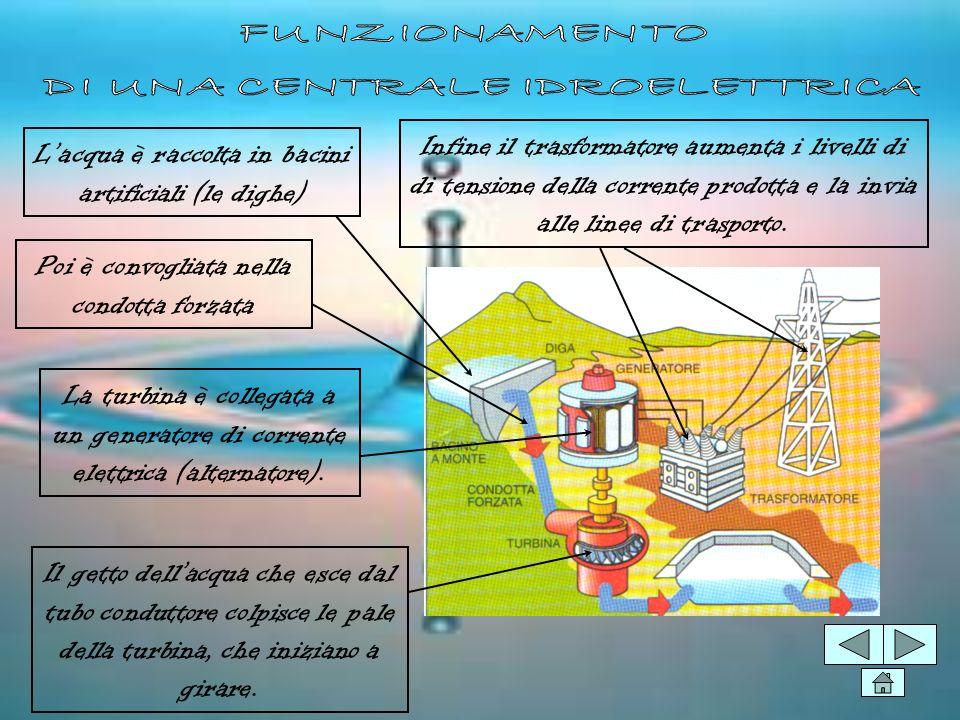 COME FUNZIONA PRO E CONTRO Le centrali idroelettriche DEFINIZIONE: Una massa dacqua in movimento contiene in sé una certa quantità di energia capace d