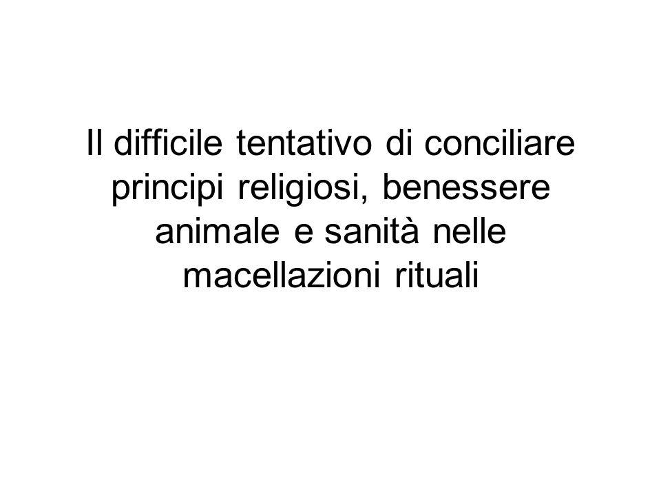 Il difficile tentativo di conciliare principi religiosi, benessere animale e sanità nelle macellazioni rituali