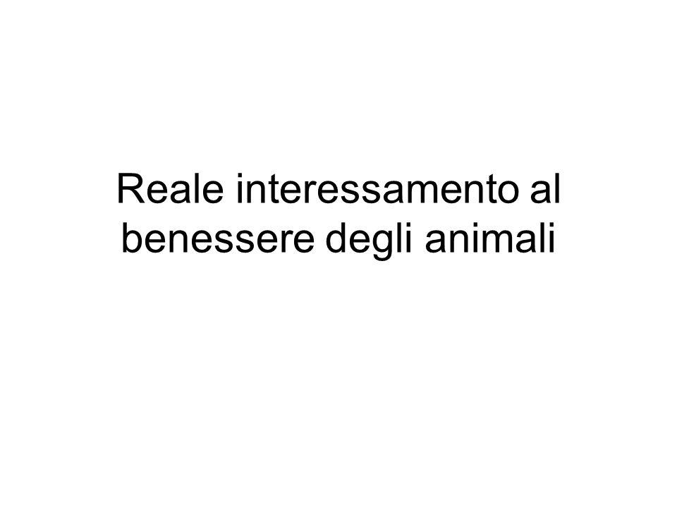 Reale interessamento al benessere degli animali