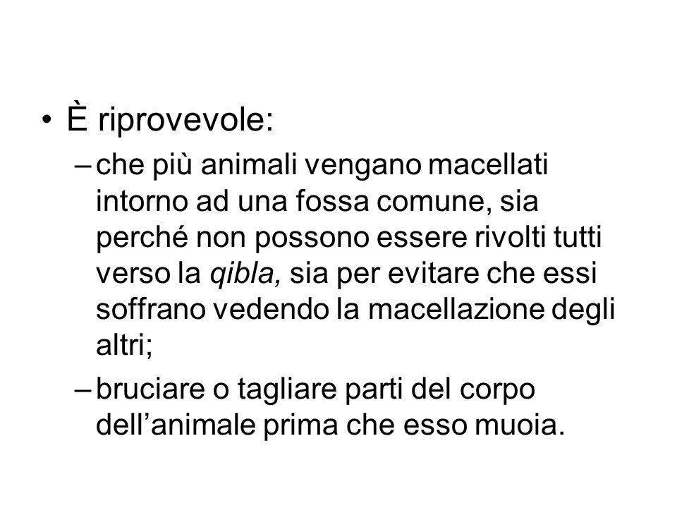 È riprovevole: –che più animali vengano macellati intorno ad una fossa comune, sia perché non possono essere rivolti tutti verso la qibla, sia per evi