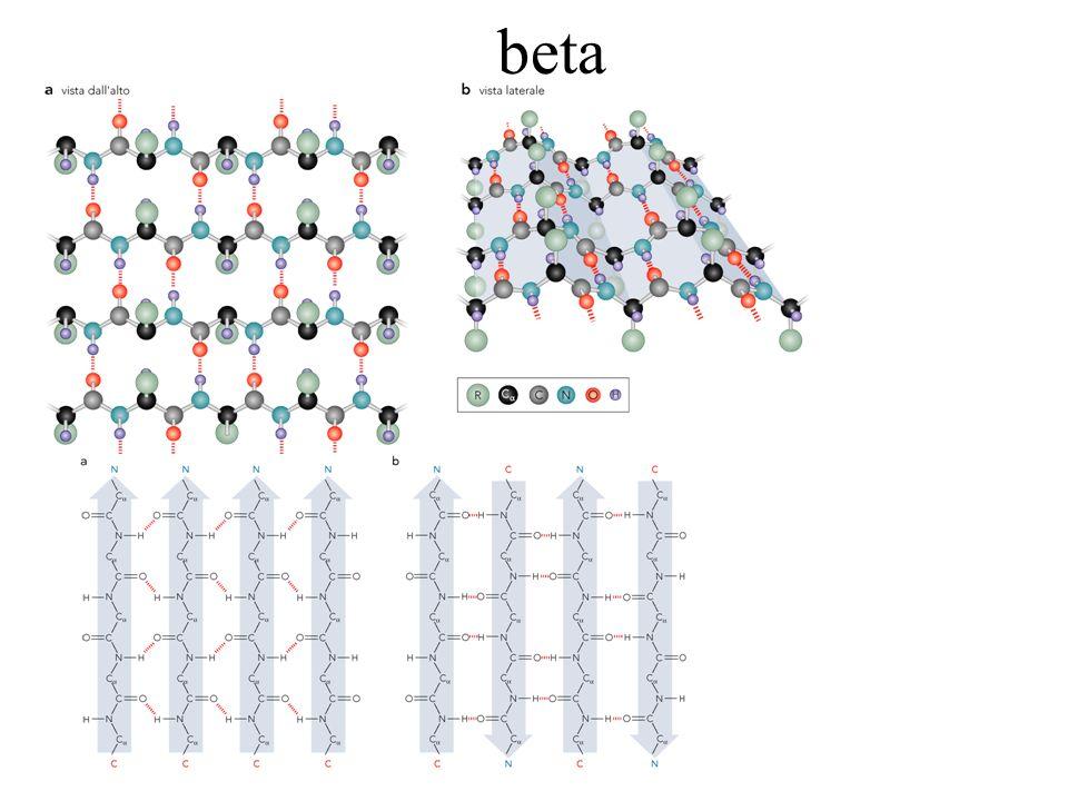 Denaturazione del DNA Bassi sali Alti sali