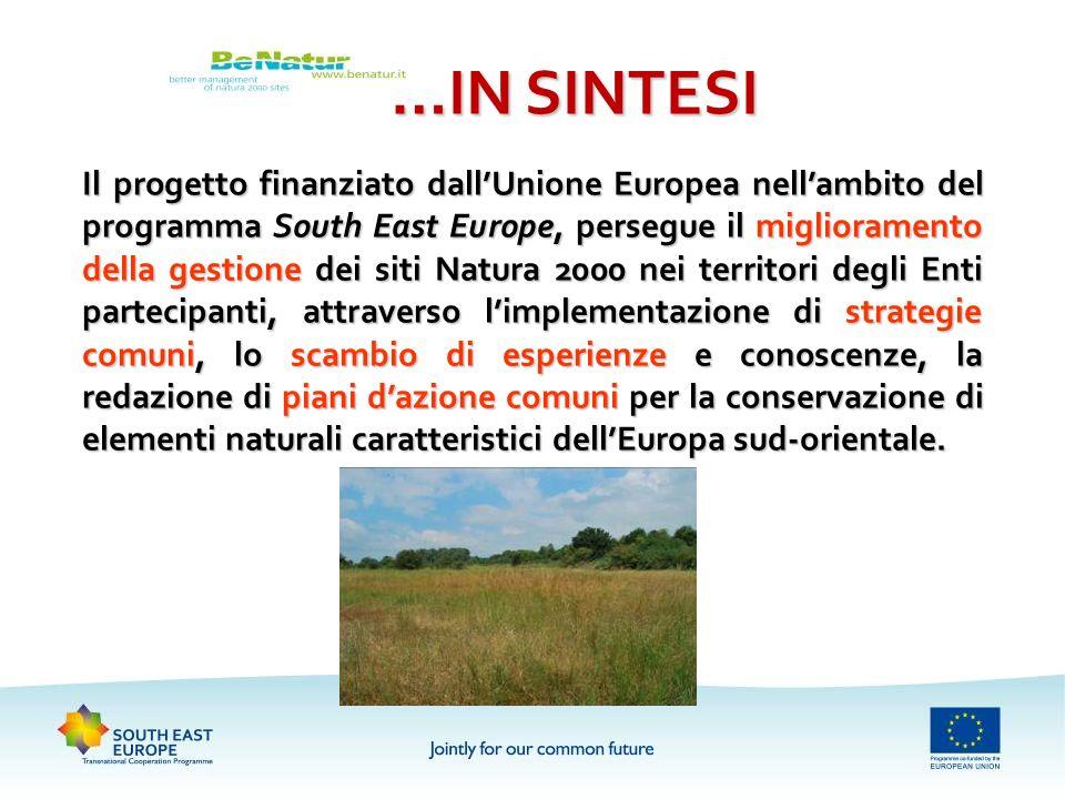 …IN SINTESI Il progetto finanziato dallUnione Europea nellambito del programma South East Europe, persegue il miglioramento della gestione dei siti Na