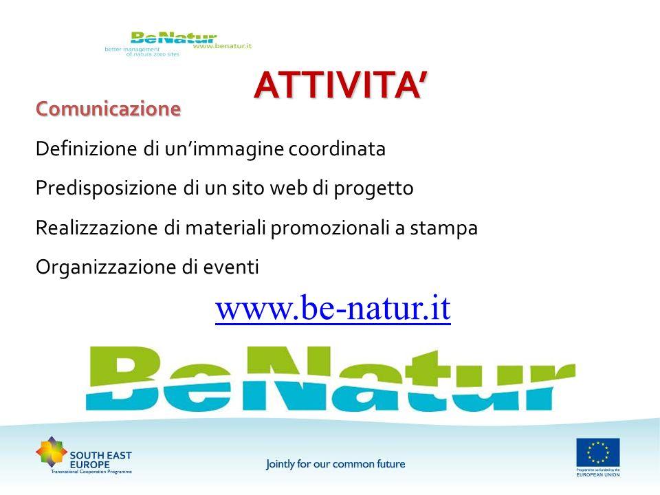 ATTIVITA Comunicazione Definizione di unimmagine coordinata Predisposizione di un sito web di progetto Realizzazione di materiali promozionali a stamp