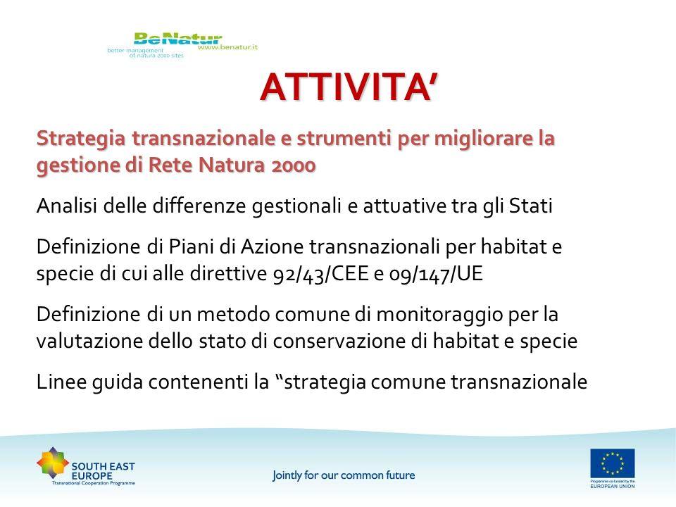ATTIVITA Strategia transnazionale e strumenti per migliorare la gestione di Rete Natura 2000 Analisi delle differenze gestionali e attuative tra gli S