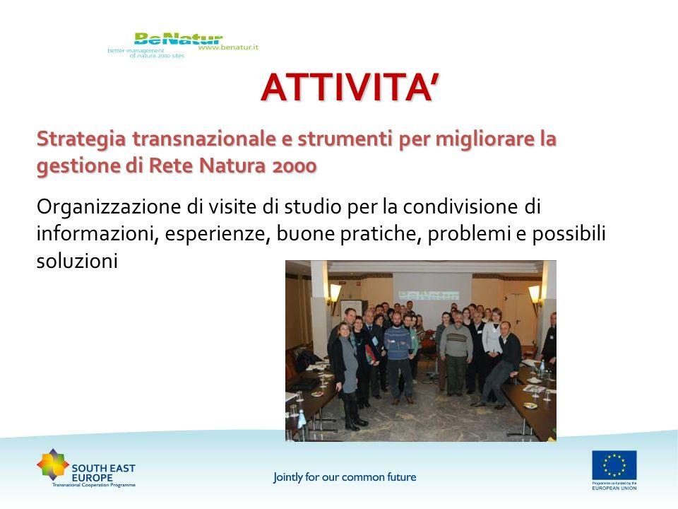 ATTIVITA Strategia transnazionale e strumenti per migliorare la gestione di Rete Natura 2000 Organizzazione di visite di studio per la condivisione di