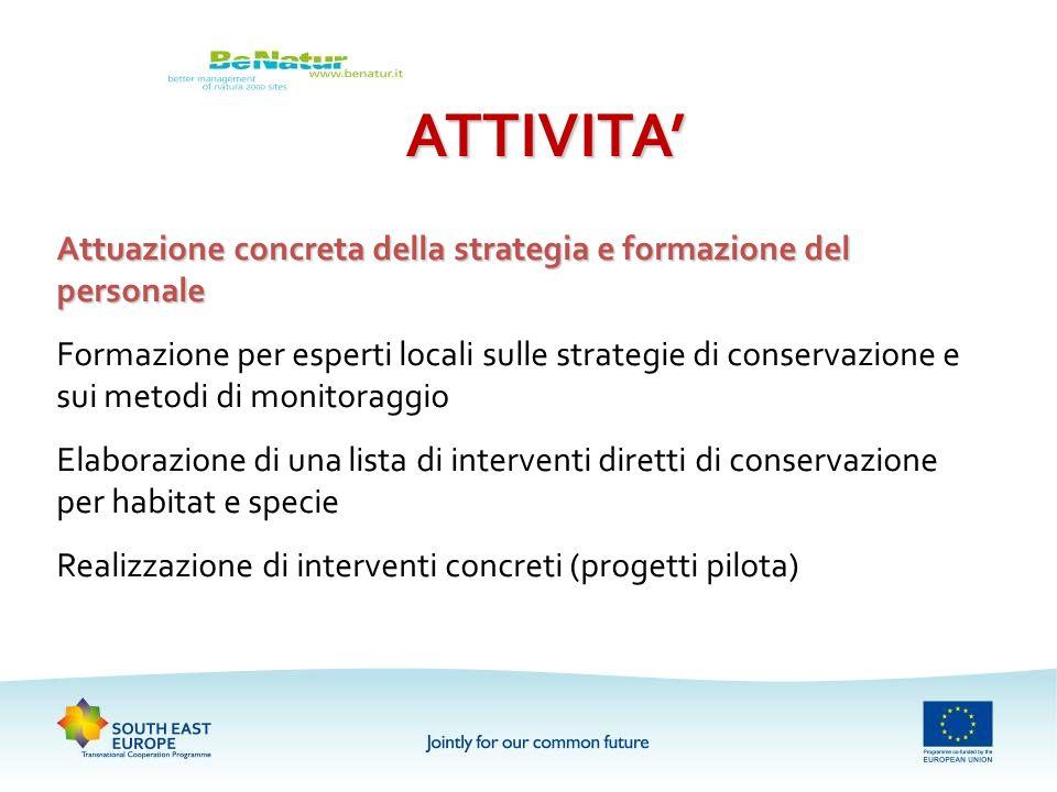 ATTIVITA Attuazione concreta della strategia e formazione del personale Formazione per esperti locali sulle strategie di conservazione e sui metodi di