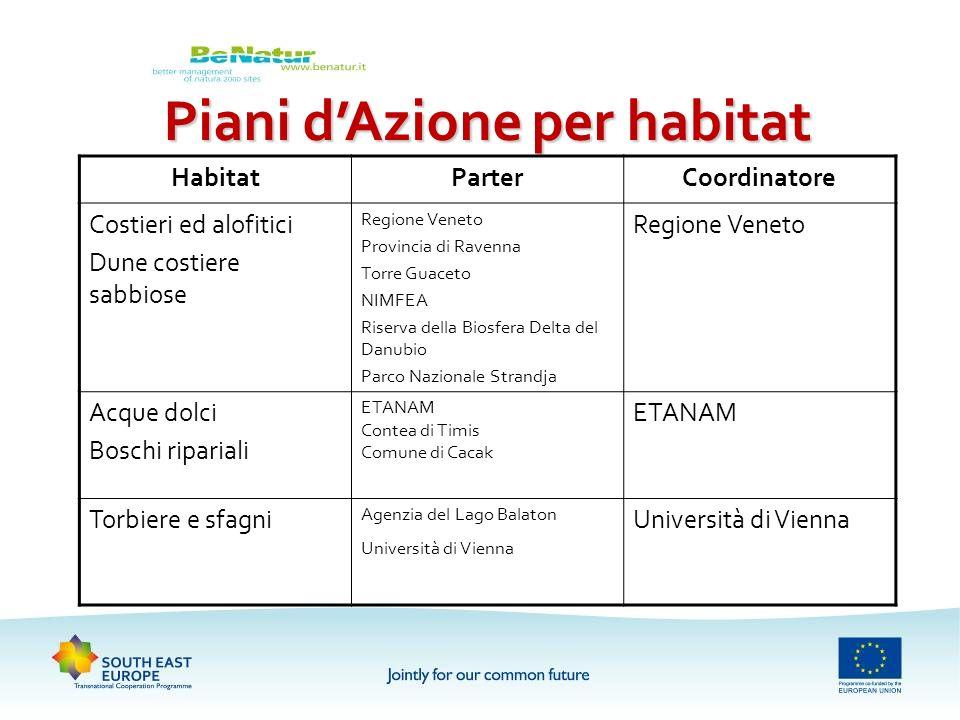 Piani dAzione per habitat HabitatParterCoordinatore Costieri ed alofitici Dune costiere sabbiose Regione Veneto Provincia di Ravenna Torre Guaceto NIM