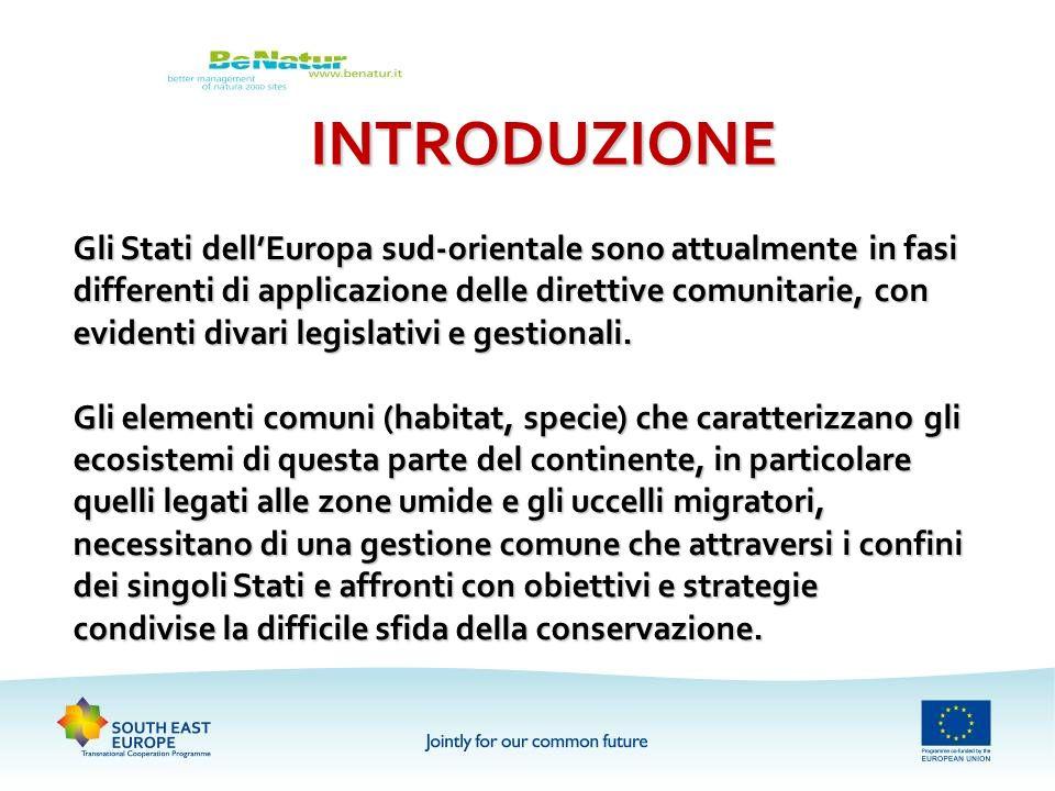 INTRODUZIONE Gli Stati dellEuropa sud-orientale sono attualmente in fasi differenti di applicazione delle direttive comunitarie, con evidenti divari l