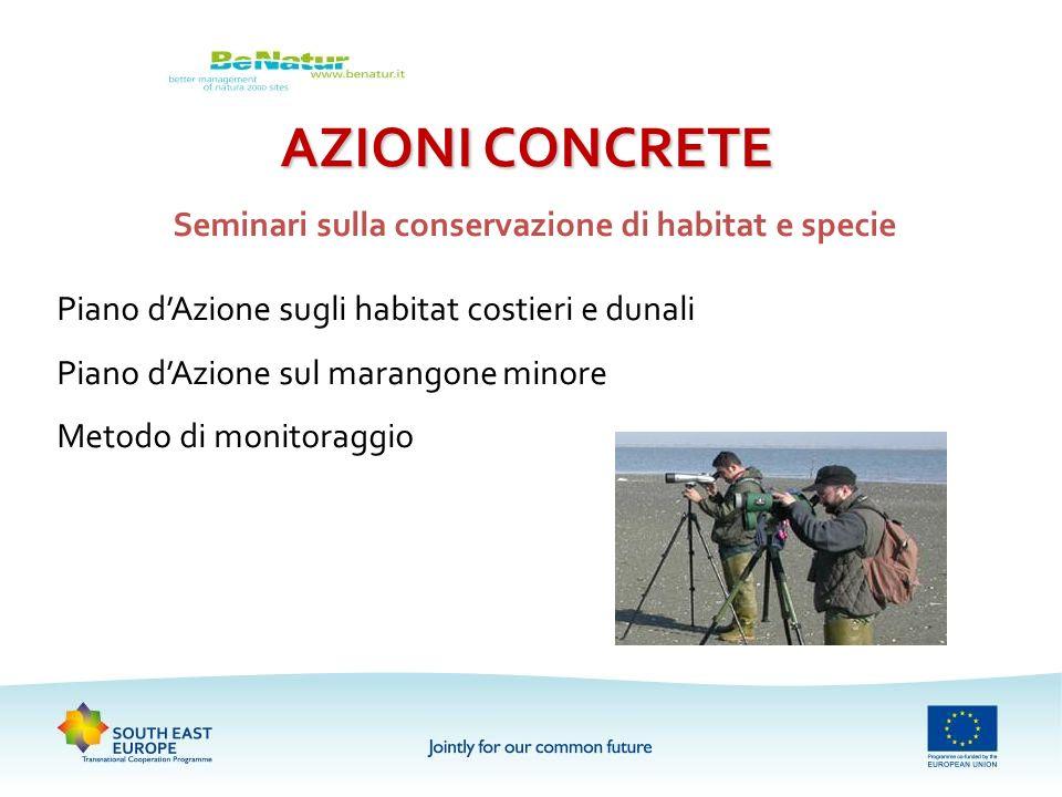 AZIONI CONCRETE Seminari sulla conservazione di habitat e specie Piano dAzione sugli habitat costieri e dunali Piano dAzione sul marangone minore Meto