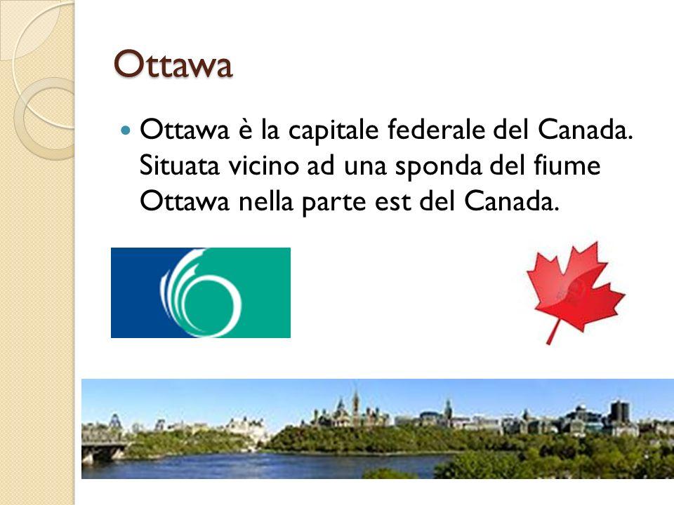 Ottawa Ottawa è la capitale federale del Canada. Situata vicino ad una sponda del fiume Ottawa nella parte est del Canada.