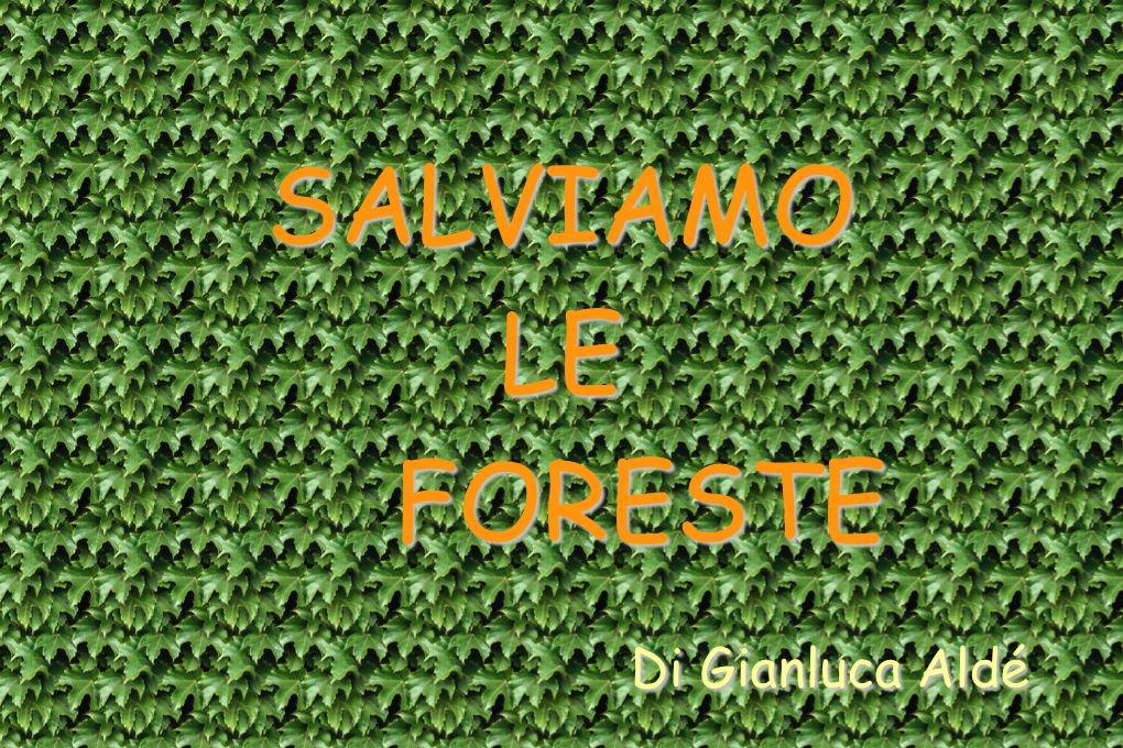 SALVIAMOLE FORESTE FORESTE Di Gianluca Aldé Di Gianluca Aldé