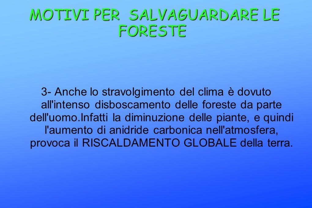 MOTIVI PER SALVAGUARDARE LE FORESTE MOTIVI PER SALVAGUARDARE LE FORESTE 3- Anche lo stravolgimento del clima è dovuto all'intenso disboscamento delle