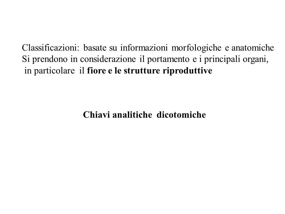 Classificazioni: basate su informazioni morfologiche e anatomiche Si prendono in considerazione il portamento e i principali organi, in particolare il
