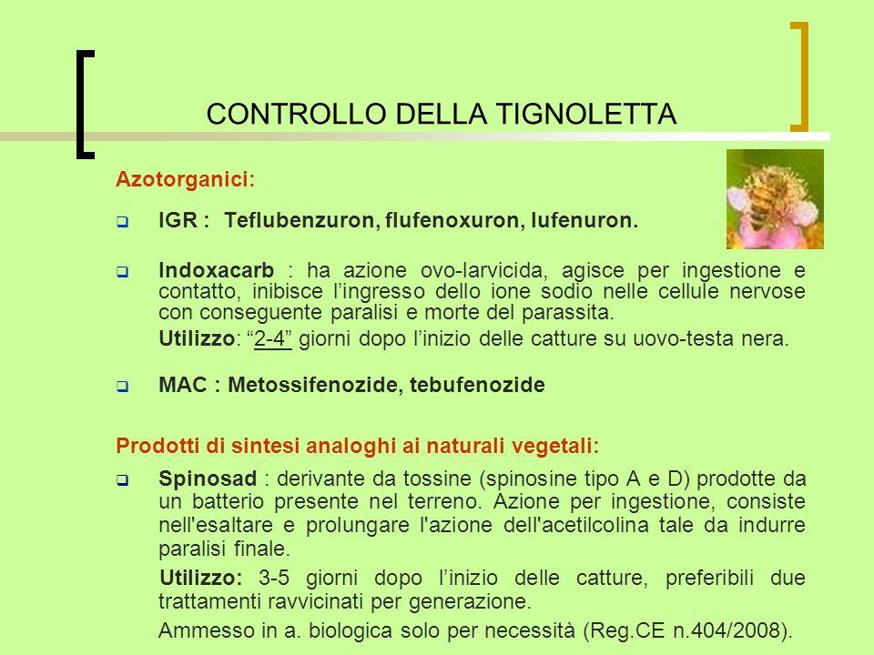 CONTROLLO DELLA TIGNOLETTA Azotorganici: IGR : Teflubenzuron, flufenoxuron, lufenuron. Indoxacarb : ha azione ovo-larvicida, agisce per ingestione e c