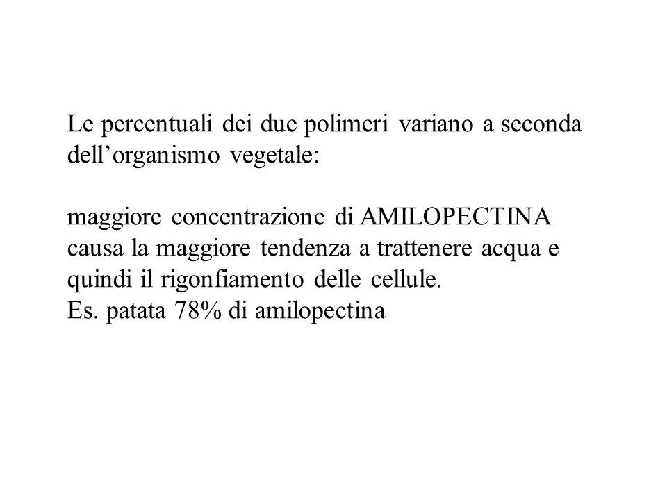 Le percentuali dei due polimeri variano a seconda dellorganismo vegetale: maggiore concentrazione di AMILOPECTINA causa la maggiore tendenza a tratten