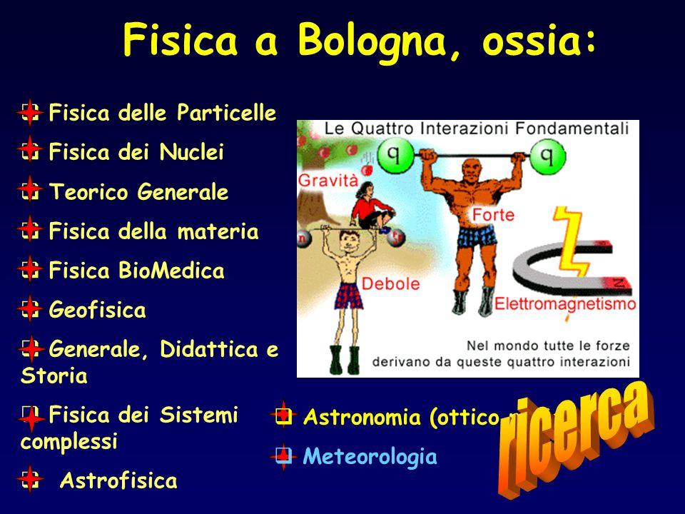 Fisica delle Particelle Fisica dei Nuclei Teorico Generale Fisica della materia Fisica BioMedica Geofisica Generale, Didattica e Storia Fisica dei Sis