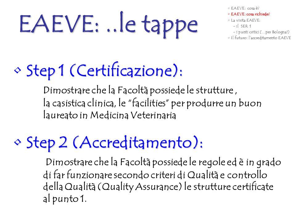 Step 1 (Certificazione): Dimostrare che la Facoltà possiede le strutture, la casistica clinica, le facilities per produrre un buon laureato in Medicin