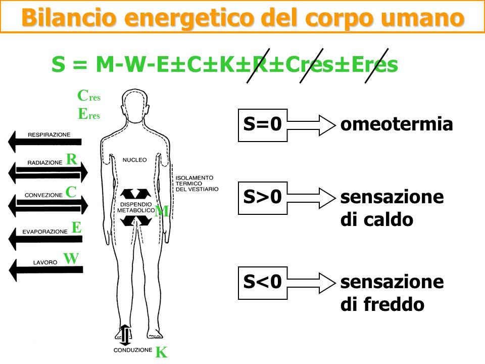 S = M-W-E±C±K±R±Cres±Eres S=0 omeotermia S>0 sensazione di caldo S<0 sensazione di freddo M W E C R K C res E res Bilancio energetico del corpo umano