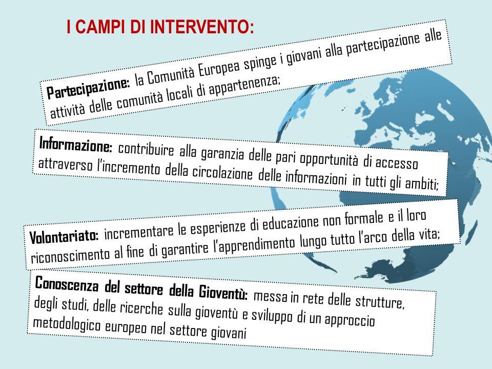 I CAMPI DI INTERVENTO: Conoscenza del settore della Gioventù: messa in rete delle strutture, degli studi, delle ricerche sulla gioventù e sviluppo di